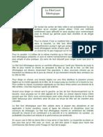 Le Filet Licol Ethologique Cheval Libre