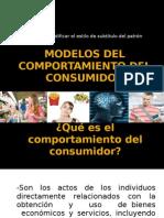 Modelos Del Comport a Mien To Del or Expo Sic Ion Jessica Farrera Glez.