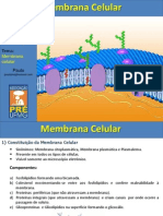 Aula Membrana Celular Final
