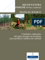 Manual Selvicultura Pino Insigne