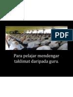 km1m pp