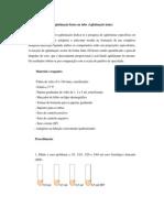 protocolos serologia(ELISA, RosaBengala,AglutinaçaoLenta