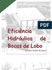 Eficiencia Hidráulica de Bocas de Lobo