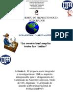 PLAN DE FORMACION PARA PROYECTO SOCIO INTEGRADOR