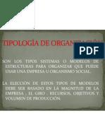 TIPOLOGÍA DE ORGANIZACIÓN 3