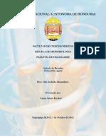 Pielonefritis Aguda (Articulo de Revison)