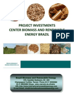 News Brazil Biomass Project Investments