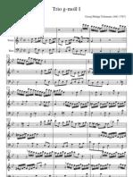 G.Ph.Telemann -  Trio g-molI  1°