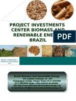 News Brazil Biomass Wood Chips Investments