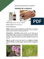 Informe de Investigación del Regaliz (Glycyrrhyza glabra L.)