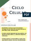 CICLO CELULAR  - 1ª SÉRIE  2011