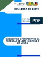 1- Aula - Situação da bovinocultura de leite no brasil e mundo