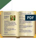 FRAMBUESO-COLECCIÓN Nº6-HERBORISTERÍA-FLORA-PLANTAS