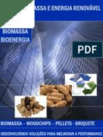 BRASIL+BIOMASSA+E+ENERGIA+RENOVÁVEL+-+WOODCHIPS-PELLETS-BRIQUETE