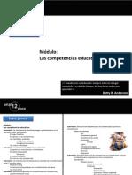 Competencias Educativas Miguel