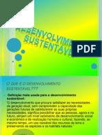 Ordenamento do território Cátia Pereira