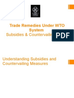 PPT-Subsidies and Countervailing Duties