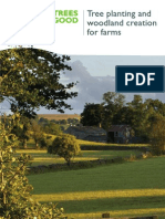 Tree planting and woodland creation for farms
