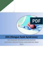 DSS (Dengue Syok Syndrome)