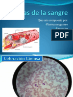 Celulas de La Sangre