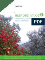 Catalogo BRINDES VIVOS 2012