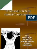 Aula 11_11_11 Legislação Ambiental