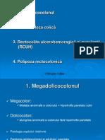 Curs 3 Megadolicocolon Diverticuloza RCUH Polipoza