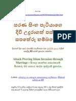 Passara Islam Minimaruvo