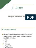Chapter 5 Lipids (1)