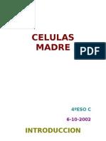 CELULAS MADRE (ARTICULO)