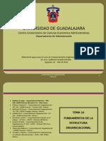 Espocicion Estructura Org.