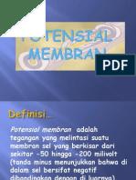 POTENSIAL MEMBRAN. presentasi 1