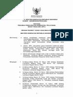 PMK No. 1205 Ttg Pedoman Persyaratan Kesehatan Pelayanan Sehat Pakai Air (SPA)