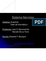 sistemanervioso-090801154724-phpapp02