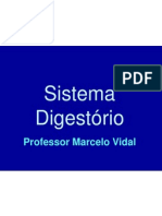 sistema_digestorio2