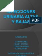 Infecciones Urinaria Altas y Bajas