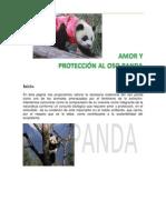 Mi Web Sobre El Panda