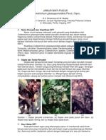 OPT Penting 4, Colletotrichum Gloeosporioides