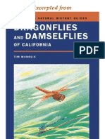 CNHG Dragonflies & Damselflies of California