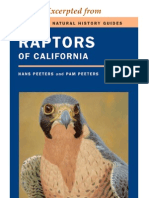 CNHG Raptors of California