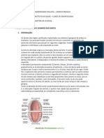 relatorio anatomia dentaria