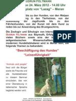 locandina tedesca