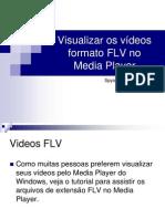 FLV No Media Player