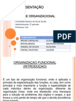 Organização_Funcional