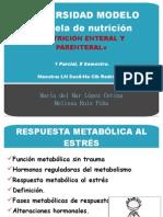 Respuesta Metabolic A Al Estres