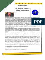 Plan Estratégico de Organización y  Marketing estratégico (Relación)