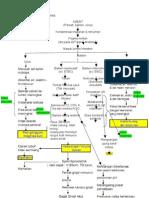 Patofisiology Gastroenteritis