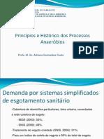 assunto 2 Princípios e Histórico dos Processos Anéróbios