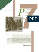 c7_plantaciones