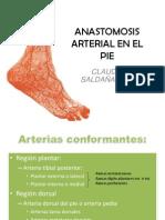 53296635 Anastomosis Arterial en El Pie Ppt